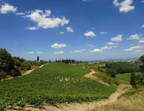 Montaione en zijn omgeving